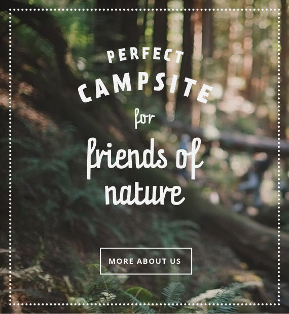Camping_Martbusch_Berdorf_Luxembourg_Slider8